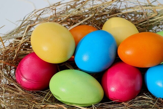 Photo of colorful eggs in a nest | Easter trivia questions and answers