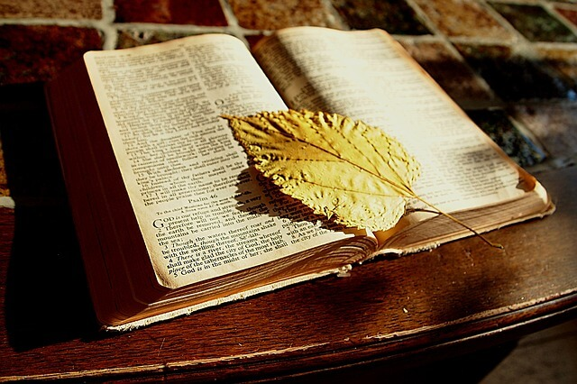 Photo of a Bible with leaf bookmark | Bible quiz on acts of the apostles