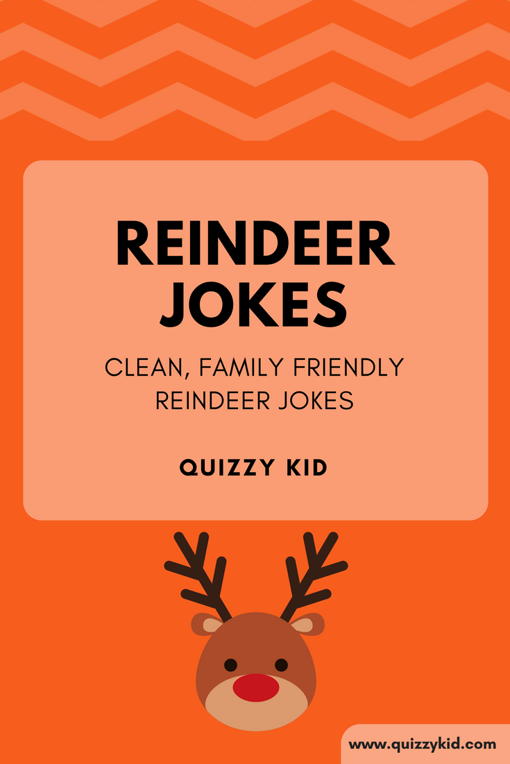 Reindeer jokes for the whole family | Quizzy Kid
