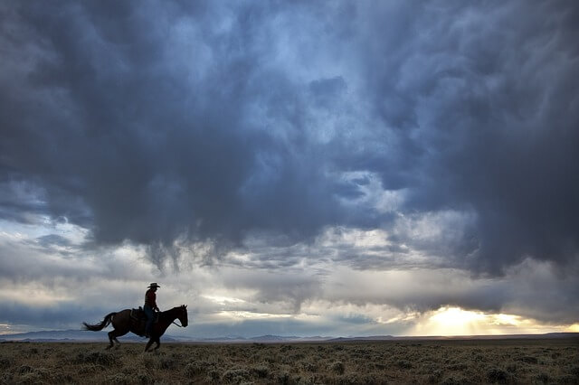 Photo of a cowboy riding his horse | Cowboy jokes for Kids | Quizzy Kid