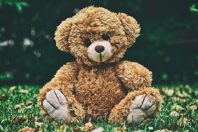A photo of a teddy sitting on grass | Teddy bear jokes for kids | Quizzy Kid