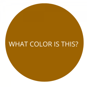 color quiz for 5 year olds - brown