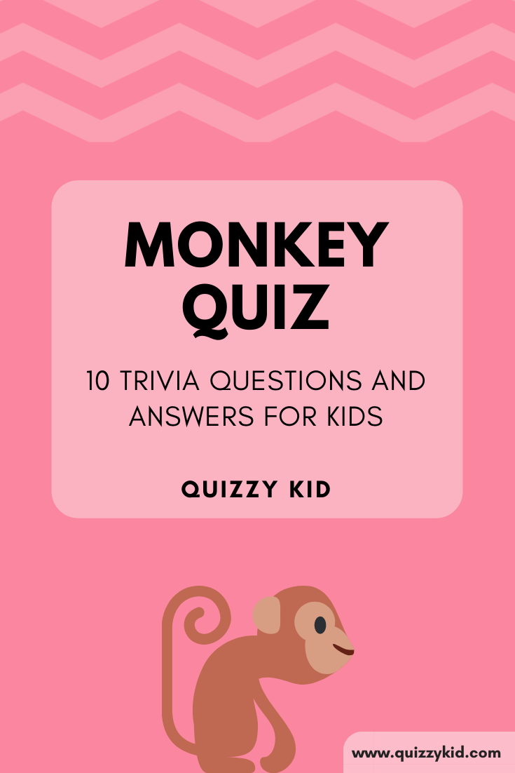 Monkey Quiz - animal quiz questions and answers